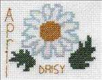 April Daisy
