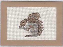 Autumn Squirrel Card